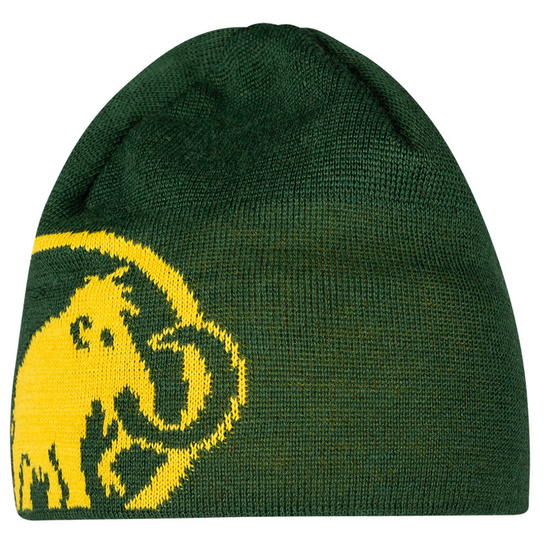 Čepice Mammut Tweak Beanie (1191-01352) woods/freesia