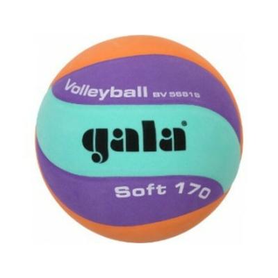 Volejbalový míč Gala Volleyball 170g 10 panelů, Gala