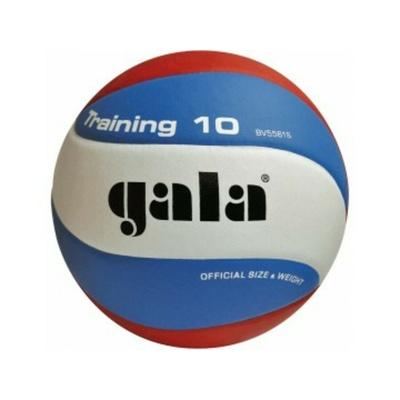 Volejbalový míč Gala Training 10 panelů, Gala